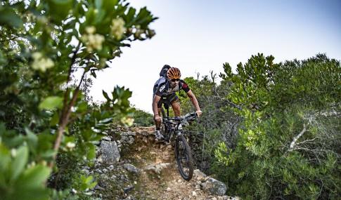 cyclist on a downhill